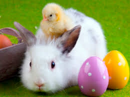Easter wishes!
